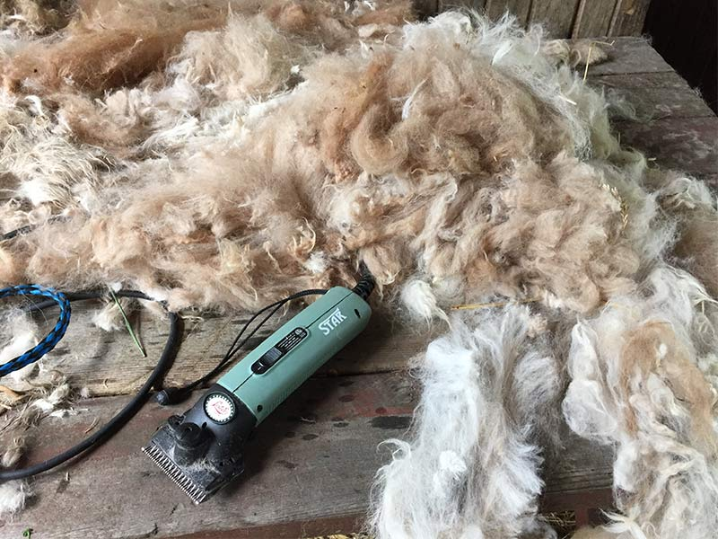 pile of wool on table