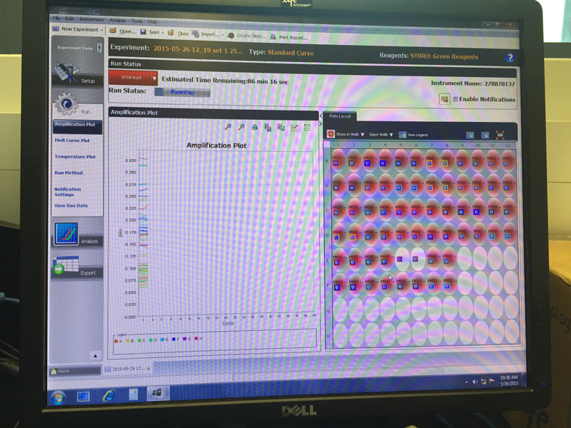Computer screen showing protein profiles