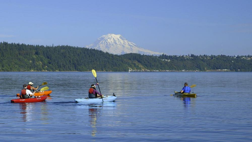 Kayakers on Gig Harbor with Mt. Rainer in the background