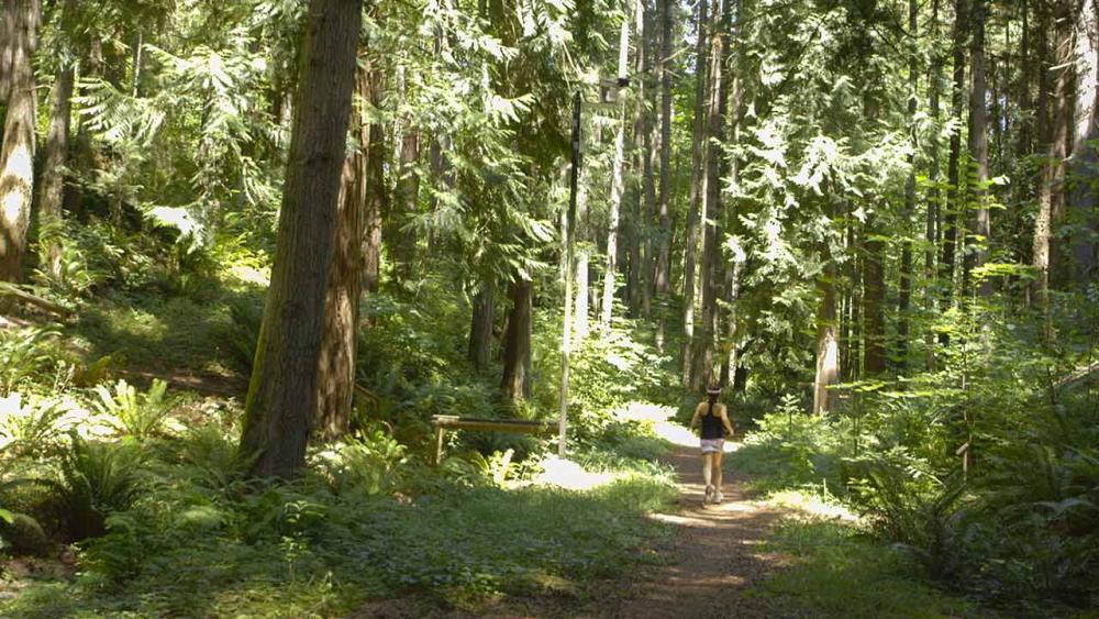 Josephine running in woods