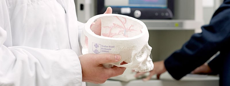 A military medical school student studies a model skull.